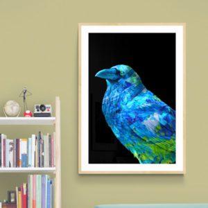 Blue Bird Nature & Creatures