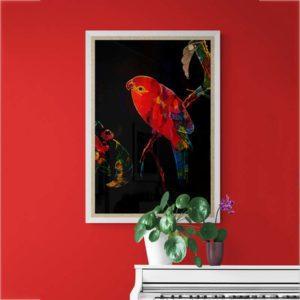 Red Bird Nature & Creatures