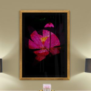 Abstract Lotus Floral