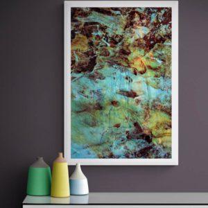 Lichen Abstract Designs