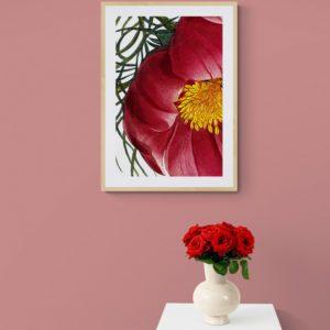 Inside Floral
