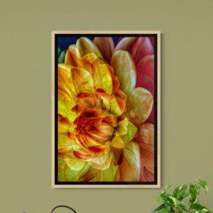 Beaming Floral