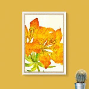 Orange Lily Floral