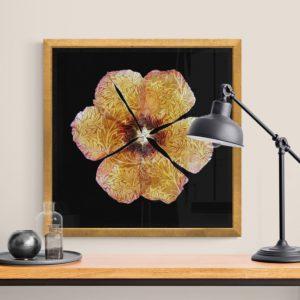 Flower's Fashion 7 Floral