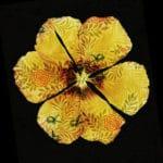 Flower-Fashion3