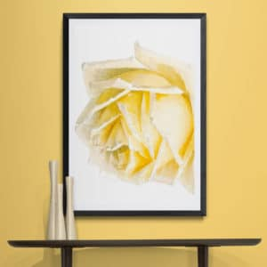 Yellow Rose Floral