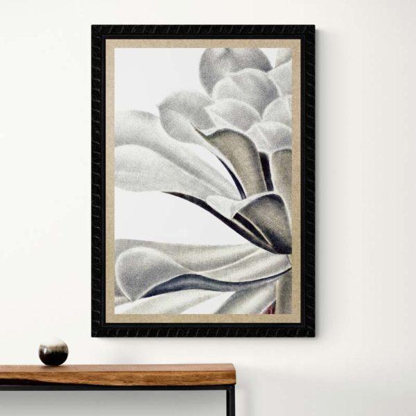 Velvet Floral